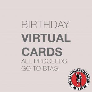 Virtual Cards-02